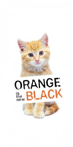 Coque Orange is the new black