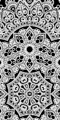 Coque Mandala Floral 1