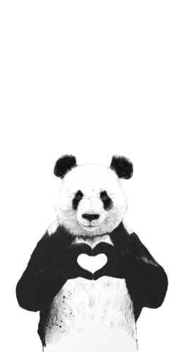 Coque Panda Coeur