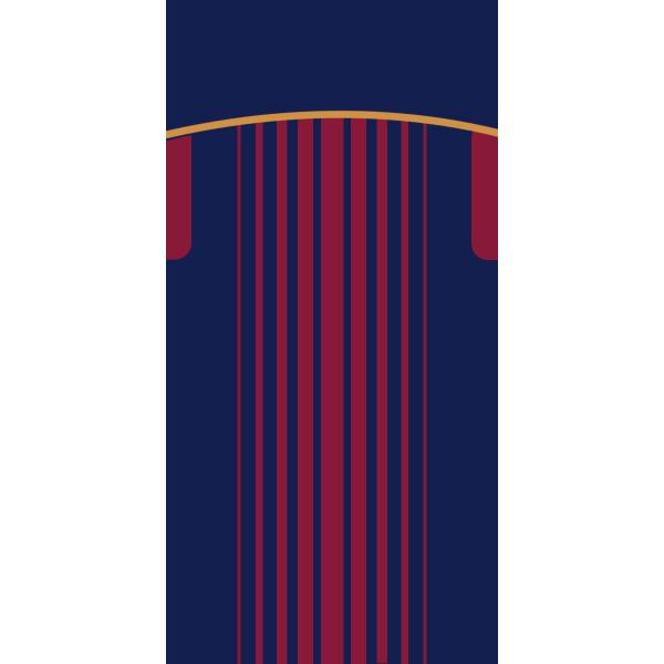 FC BARCELONE DOMICILE II