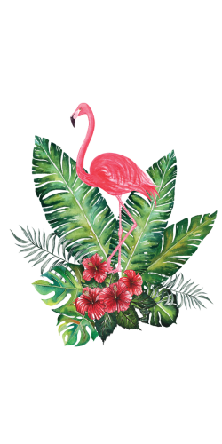 Coque Flamand Rose Tropical