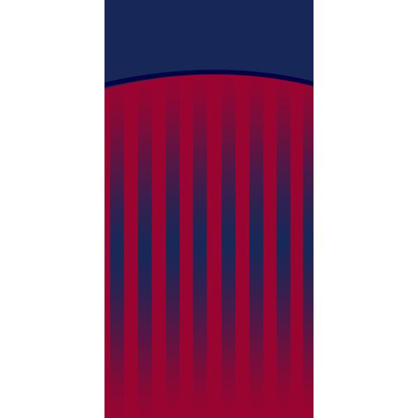 CLERMONT FOOT 63 DOMICILE