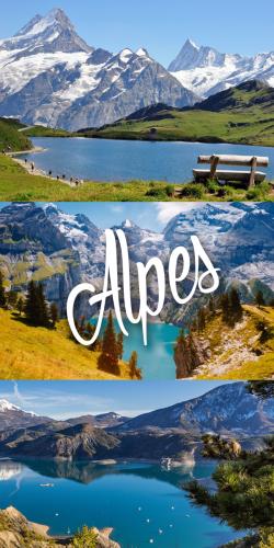 Coque Alpes