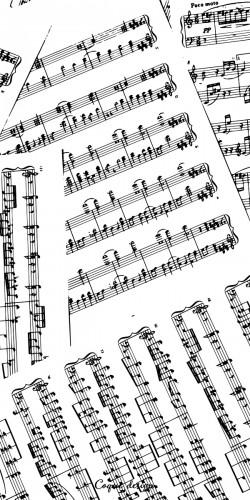Coque partition de musique